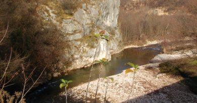 Profesionalni biolozi i studenti istraživali biodiverzitet u zaštićenom pejzažu Bentbaša