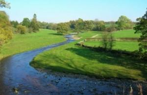 rijeka-priroda