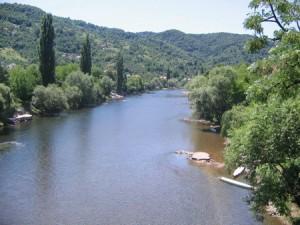 vrbas_sa_zelenog_mosta