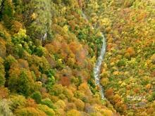 Kanjon Rakitnice