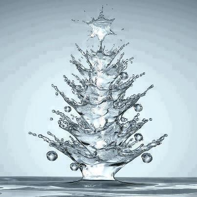jelka-voda