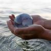 svjetski-dan-voda