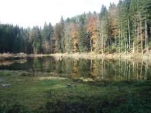 paucko-jezero-gorsko-oko-konjuh-kladanj