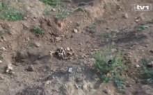 deponija-smeca-travnik-bajra