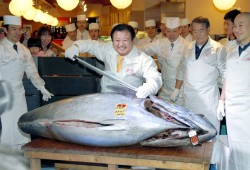 tuna-12412