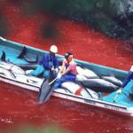 ubijanje-delfina-film-the-cove-uvala