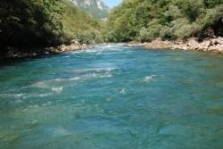 Ž7=#Prelijep kanjom Tare je velika atrakcija za ljubitelje raftinga#