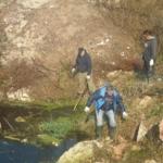 Čišćenje algi