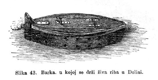 43_barka_za_cuvanje_zive_ribe