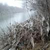 rijeka Zeljeznica smece uz rijeku pvc kese zastave sramote