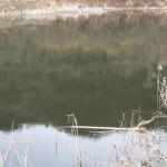 Otvor-sezone-jezero-staraca-28-februar-20154677