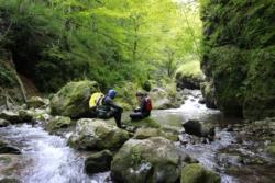 Rijeka Hrcavka, photo Mato Gotovac WWF