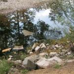 Rijeka Bosna na početku naselja Osijek odmah nakon prolaska ispod brze ceste prema Blažuju