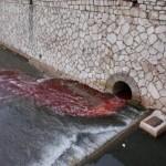 Pa malo u boji Sarajeva