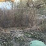 Mali kolektor koji nije u funkciji i gdje fekalne vode direktno ulaze prelijevanjem u meander