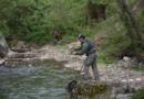 Otvoreni poziv za učešće na 1. Kupu FBiH u lovu grabljivica umjetnim mamcima sa obale