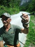Ž7=Vratar  stanište  zmija smuka i crnih šarki, Čedo Damjanović  (Foto, I. BAJROVIĆ)