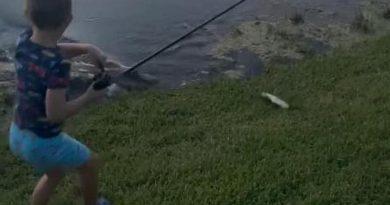 """Aligator """"ukrao"""" dječaku ulovljenu ribu i štap"""